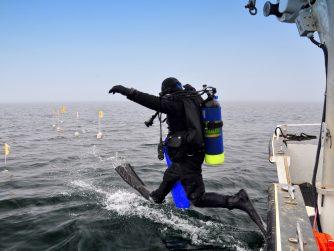 scuba diver jumping