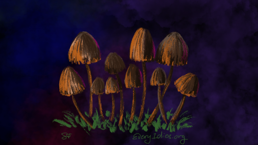 magic mushrooms - orangish psilocybin mushrooms on a velvety purple background