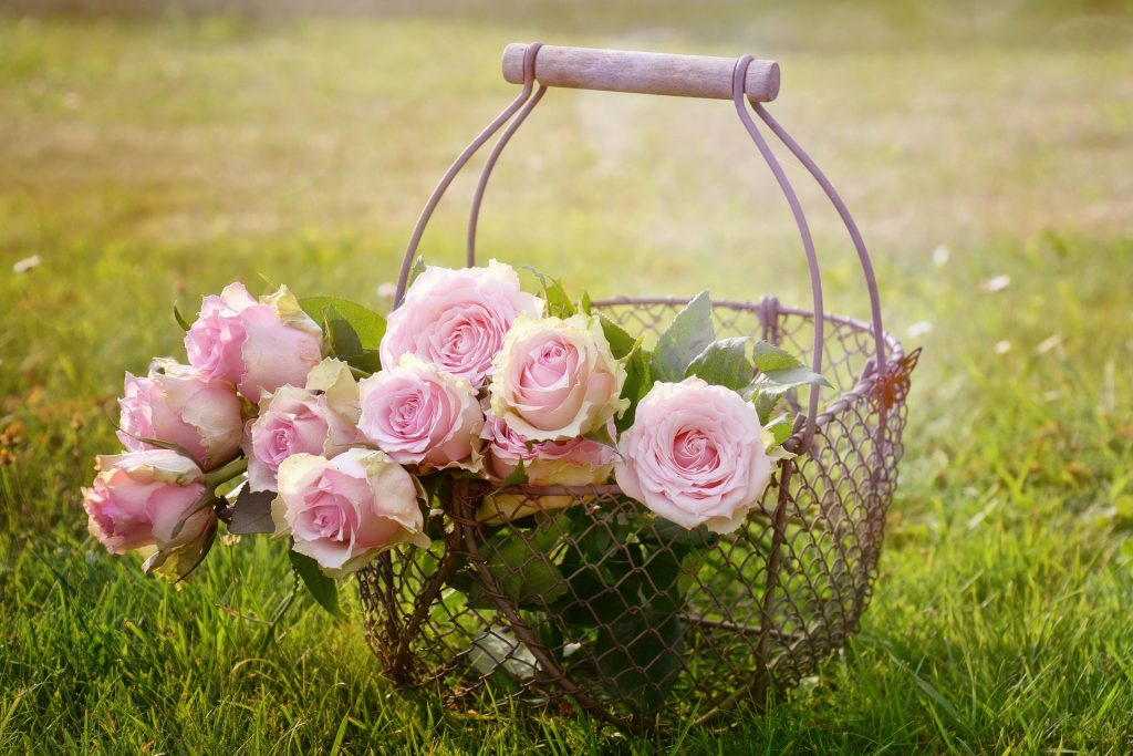Pink roses in a basket.  (Image by Rebekka D from Pixabay.)